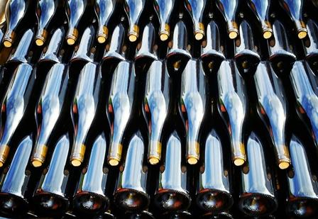 Bouteilles-vin-muscadet-bio