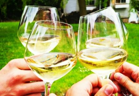 Verres-vin-muscadet-bio
